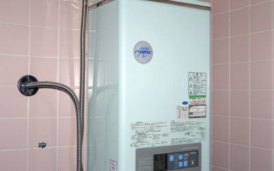 Tanked Water Heater: You Still May Want One